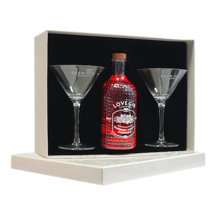 Raspberry, Vanilla & Meringue Liqueur 50CL Martini Glass Gift Set | Eden Mill Distillery St Andrews